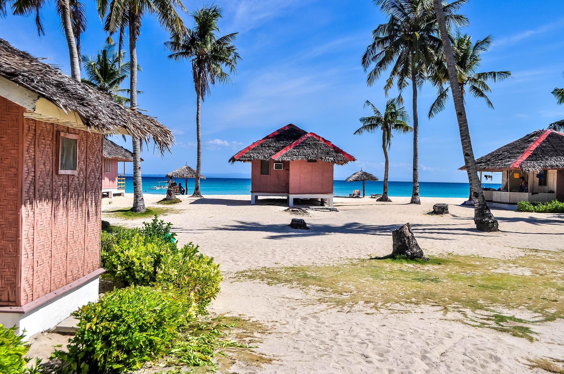 palm bungalow hut